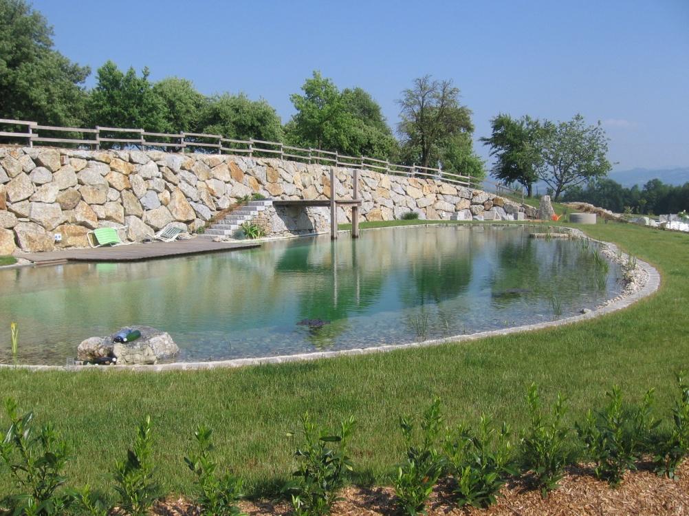 Gartengestaltung hermann neu leistungen schwimmteich for Garten pool korfu 1