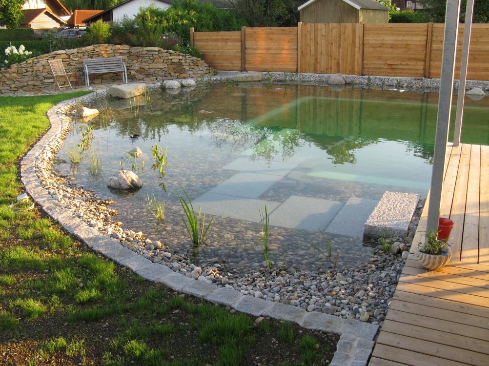 Natur-Schwimmteich / Pool im eigenen Garten