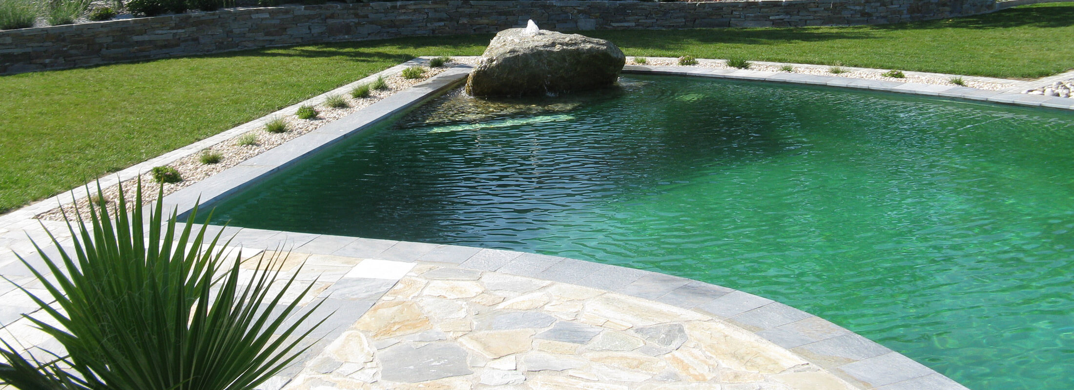 Schwimmteich / Pool